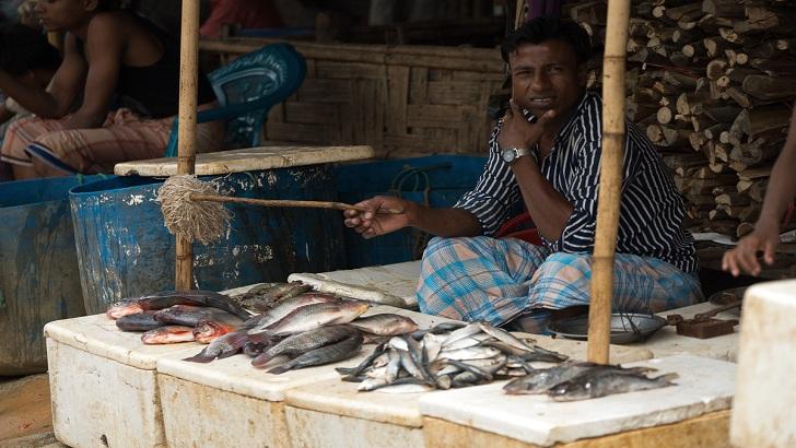 কুতুপালংয়ে মাছ বিক্রি করছেন এক শরণার্থী -আলজাজিরা