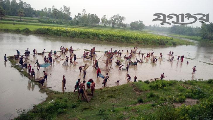 করতোয়া নদীতে পানি বৃদ্ধি পাওয়ায় মাছ ধরার মহোৎসব। ছবি: যুগান্তর
