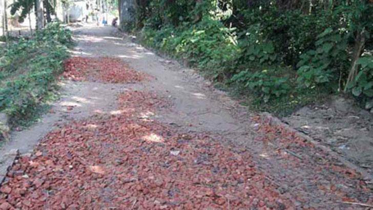 ভুরুঙ্গামারীতে বিএসএফের বাঁধায় রাস্তা-বাড়ি নির্মাণ বন্ধ