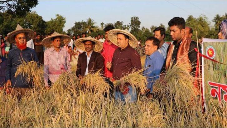 সাতক্ষীরা জেলা প্রশাসক এসএম মোস্তফা কামাল