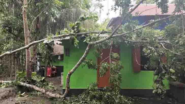 আম্পানের তাণ্ডবে বিধ্বস্ত ঘর