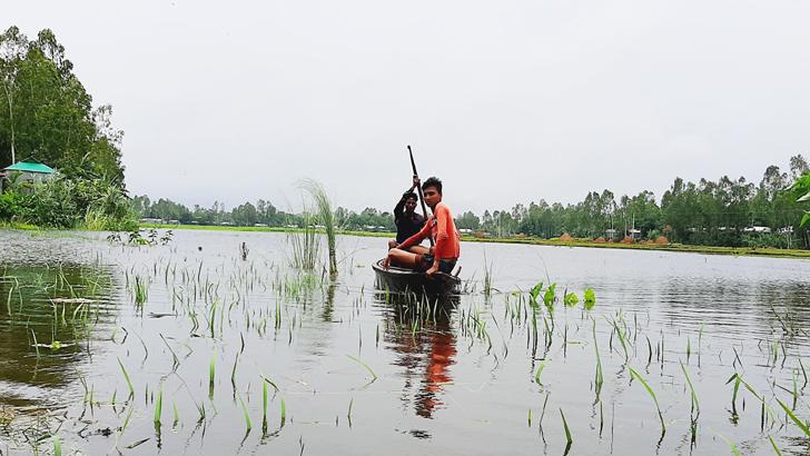 কুড়িগ্রাম নদ-নদীর পানি বৃদ্ধি, নিম্নাঞ্চল প্লাবিত