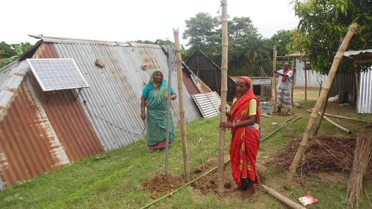 পদ্মার পানি কমায় ঘরবাড়ি তৈরিতে ব্যস্ত চরবাসী