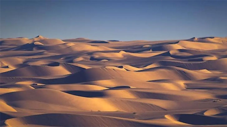 বোকা বানাল আরবের মরুভূমি