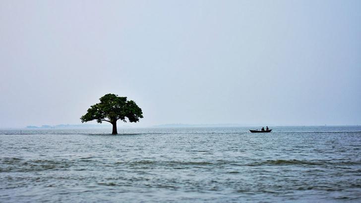 কিশোরগঞ্জের নিকলী হাওর। ফাইল ছবি
