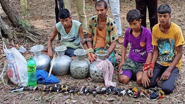 হবিগঞ্জে ১৩২ পাখি শিকারের দায়ে ৩ জনের কারাদণ্ড