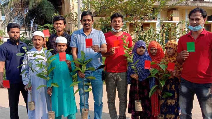 কুমিল্লায় টিফিনের টাকায় গাছের চারা বিতরণ শিক্ষার্থীদের