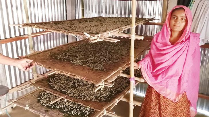 রেশম গুটিতে স্বপ্ন বোনেন নারী কৃষকরা