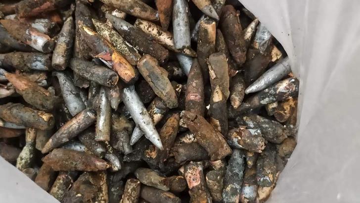 রেল কলোনির মাটি খুঁড়তেই মিলল বিপুল পরিমাণ বুলেট
