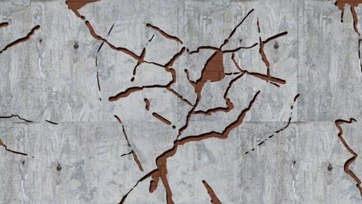 ইন্দোনেশিয়া-মালয়েশিয়ায় শক্তিশালী ভূমিকম্প
