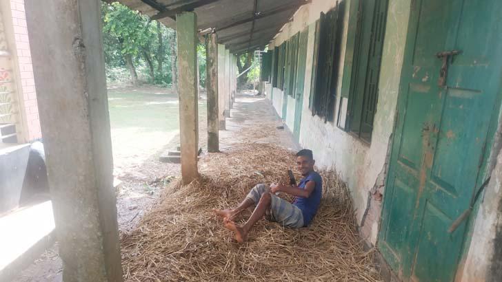 স্কুল মাঠে চরে গরু, বারান্দায় মাদকের আড্ডা
