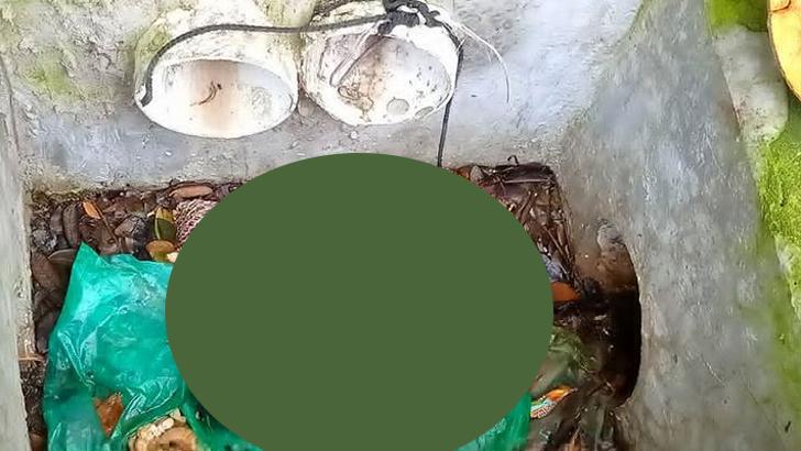 ডাস্টবিনে পলিথিনে মোড়ানো নবজাতকের লাশ