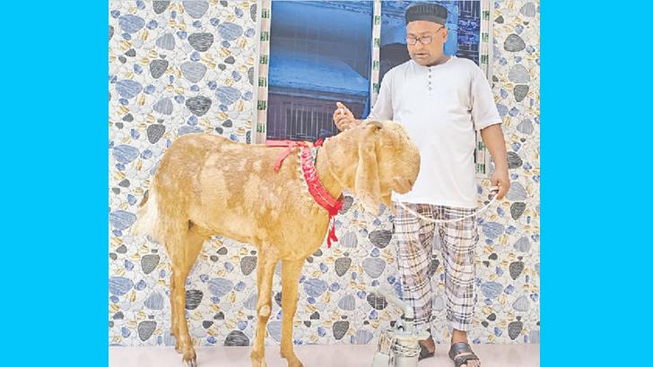 নজর কাড়ছে ৯০ কেজির 'রাজাবাবু'