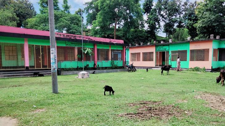 শ্রীমঙ্গলে স্কুলের প্রধান শিক্ষকের বিরুদ্ধে ষড়যন্ত্রের অভিযোগ